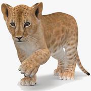 Leão Bebé Rigged 3d model