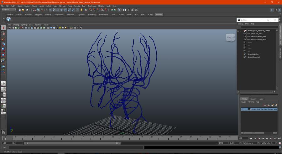 Układ nerwowy ludzkiej głowy royalty-free 3d model - Preview no. 16