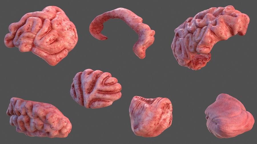 Ludzki mózg lewej półkuli royalty-free 3d model - Preview no. 8