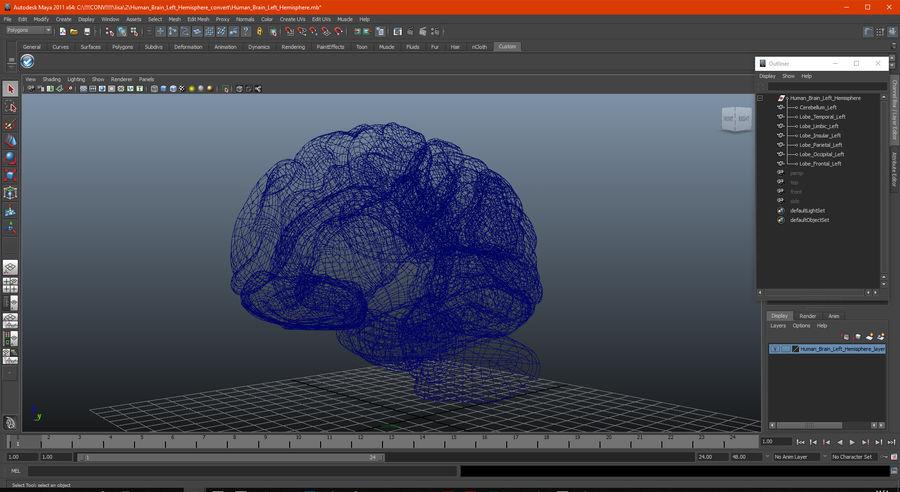 Ludzki mózg lewej półkuli royalty-free 3d model - Preview no. 19