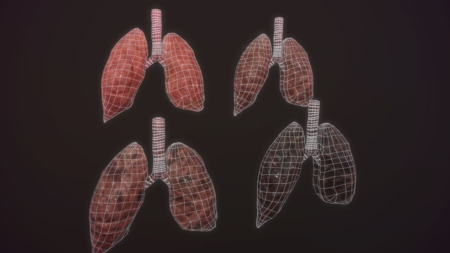 lung of smoking animation respiratory organ medicine Low-poly 3D model royalty-free 3d model - Preview no. 13