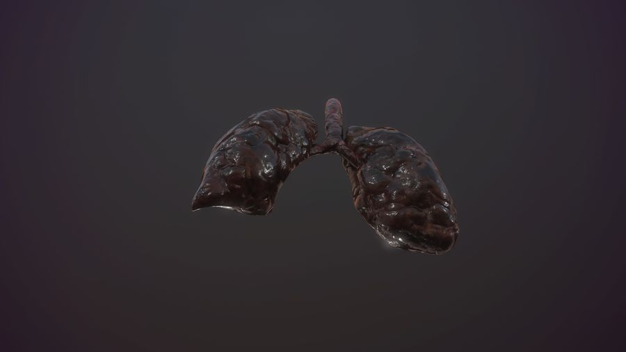 lung of smoking animation respiratory organ medicine Low-poly 3D model royalty-free 3d model - Preview no. 11