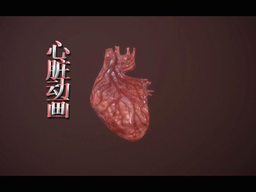 Animacja serca bicie serca narząd Model Low-poly 3D royalty-free 3d model - Preview no. 14