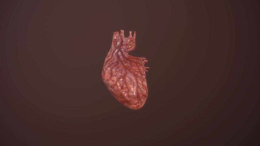 Animacja serca bicie serca narząd Model Low-poly 3D royalty-free 3d model - Preview no. 1