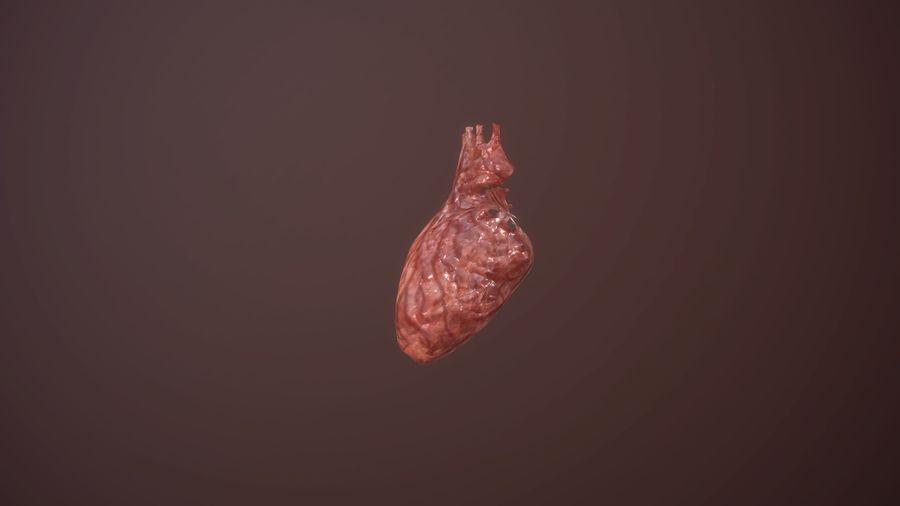 Animacja serca bicie serca narząd Model Low-poly 3D royalty-free 3d model - Preview no. 3