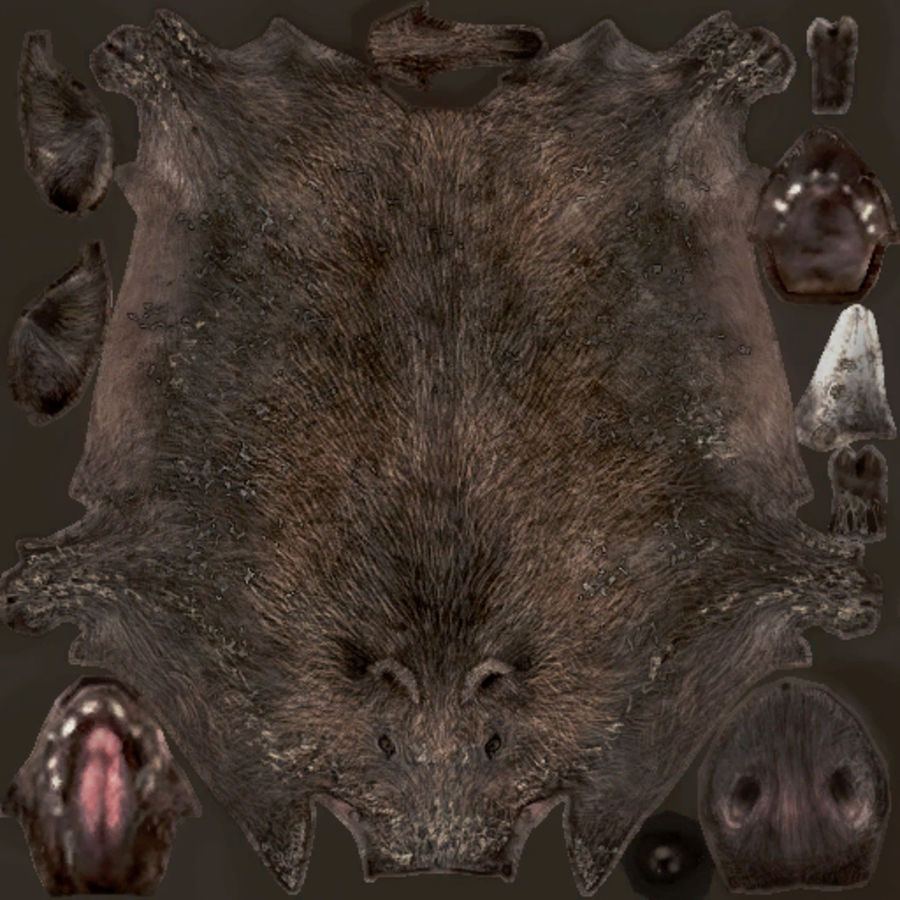 Boar type 02 royalty-free 3d model - Preview no. 1