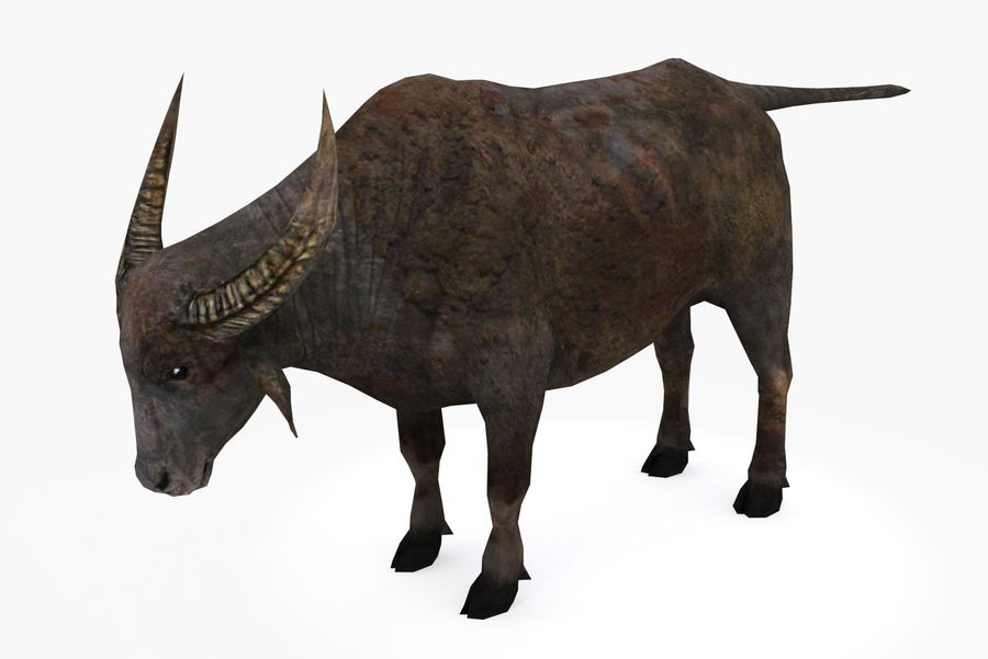 Buffalo typ 01 royalty-free 3d model - Preview no. 2