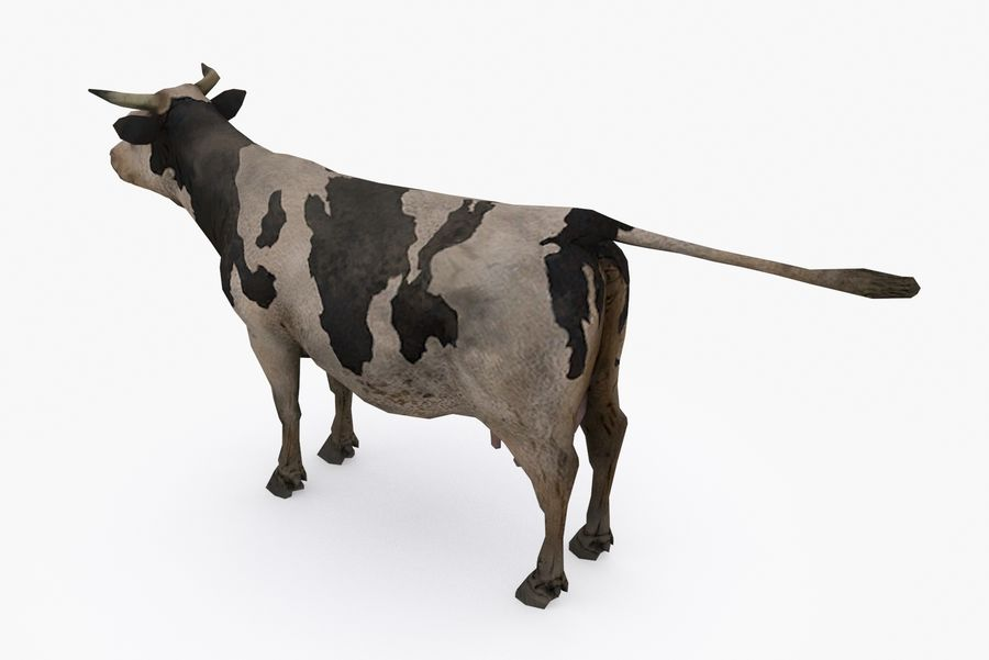 Typ krowy 01 A royalty-free 3d model - Preview no. 6