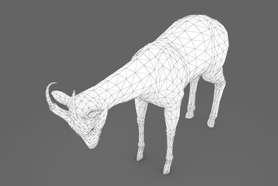Deer type 01 royalty-free 3d model - Preview no. 10