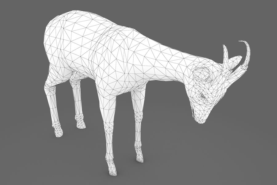 Deer type 01 royalty-free 3d model - Preview no. 9
