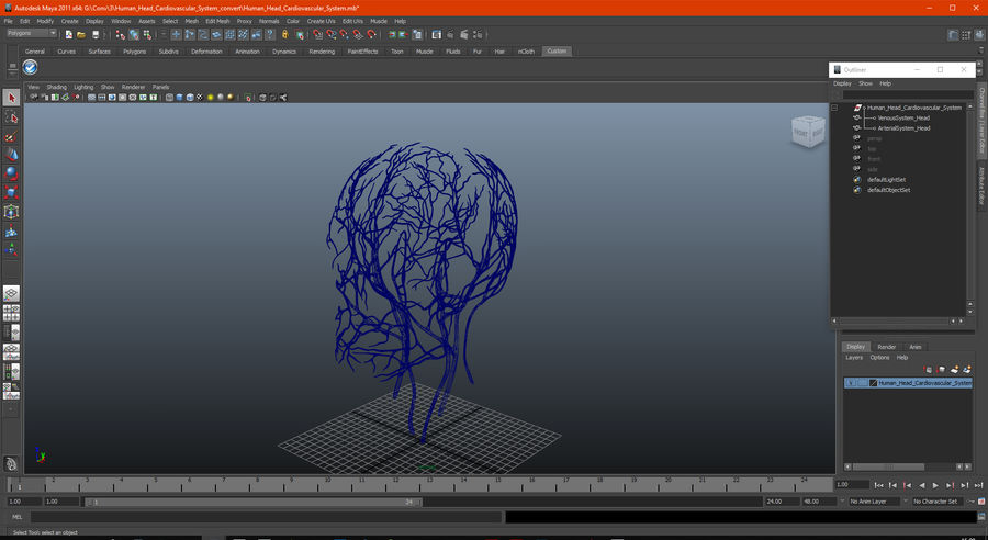 Human Head Cardiovascular System royalty-free 3d model - Preview no. 14