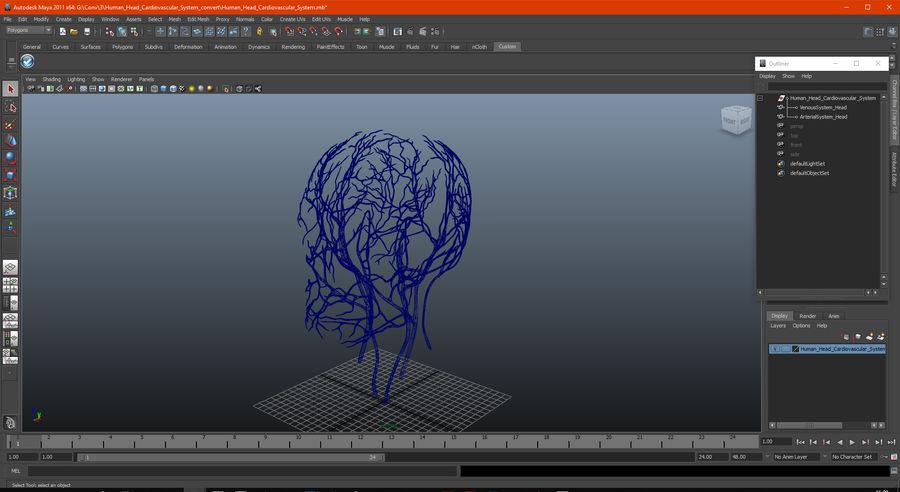 Układ sercowo-naczyniowy ludzkiej głowy royalty-free 3d model - Preview no. 14