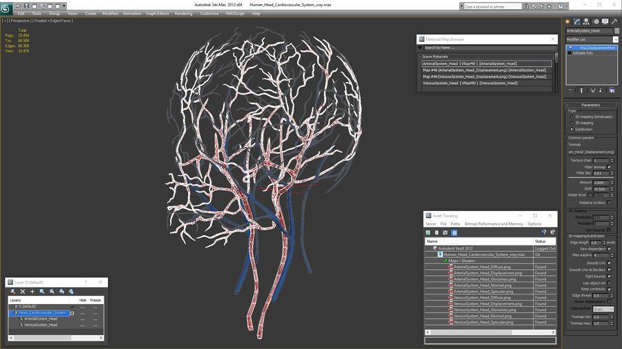 Układ sercowo-naczyniowy ludzkiej głowy royalty-free 3d model - Preview no. 16
