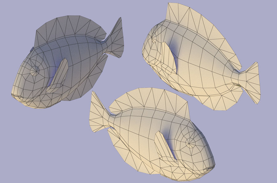 Fish paracanthurus hepatus royalty-free 3d model - Preview no. 5