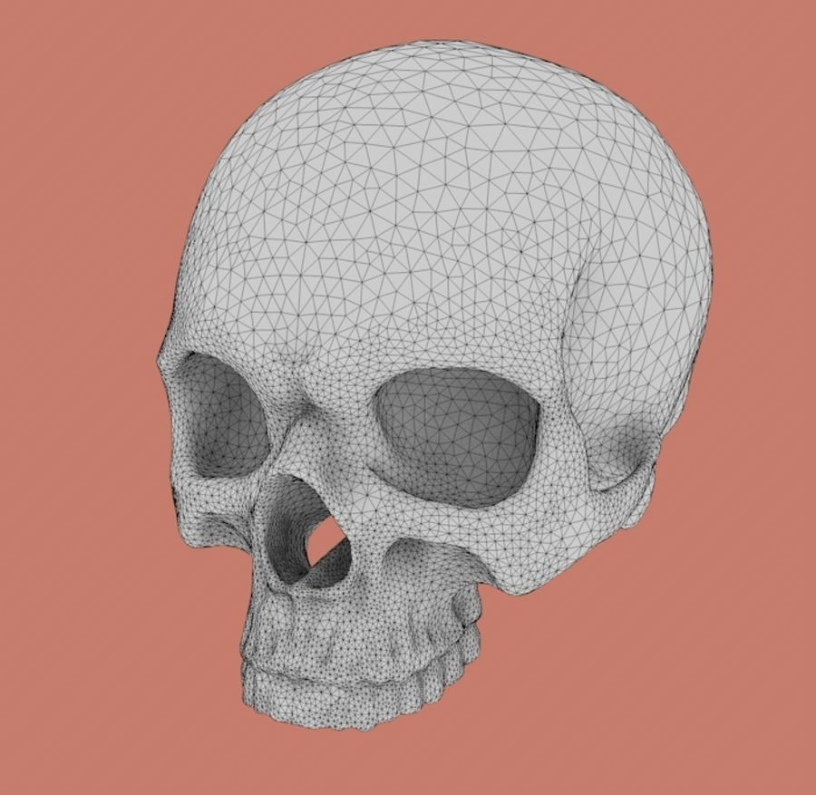 Skull without lower jaw royalty-free 3d model - Preview no. 3