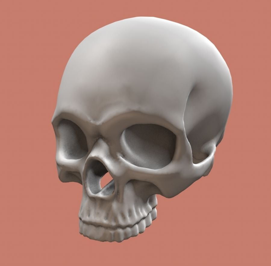 Skull without lower jaw royalty-free 3d model - Preview no. 1