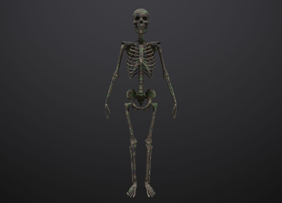 Substance Skeleton Army royalty-free 3d model - Preview no. 10