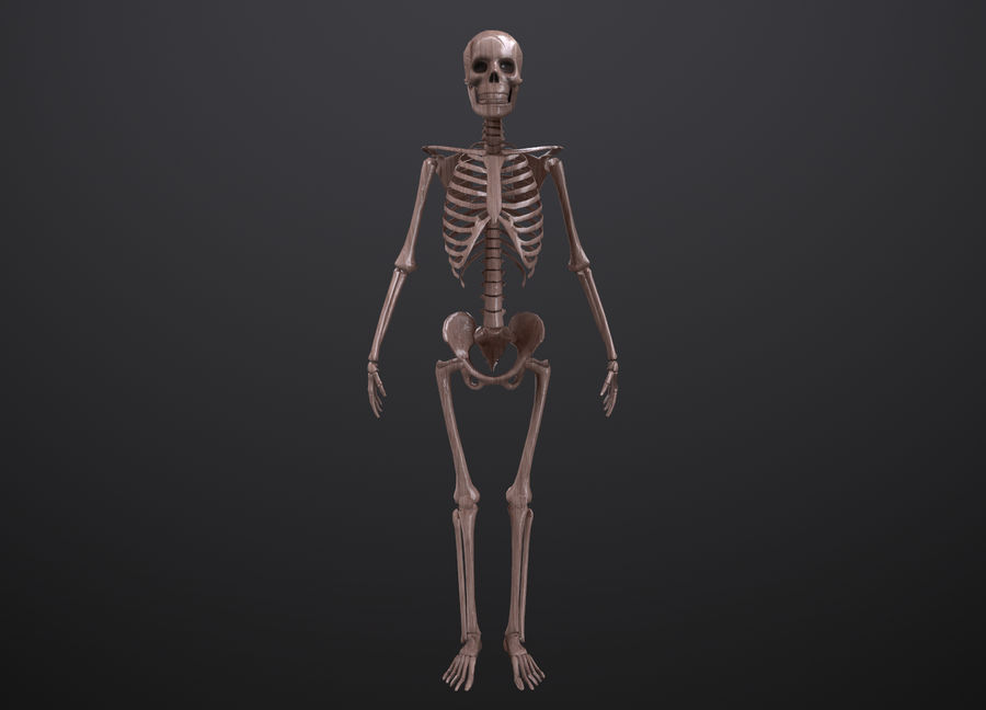 Substance Skeleton Army royalty-free 3d model - Preview no. 25