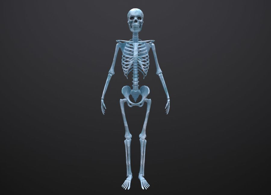 Substance Skeleton Army royalty-free 3d model - Preview no. 14