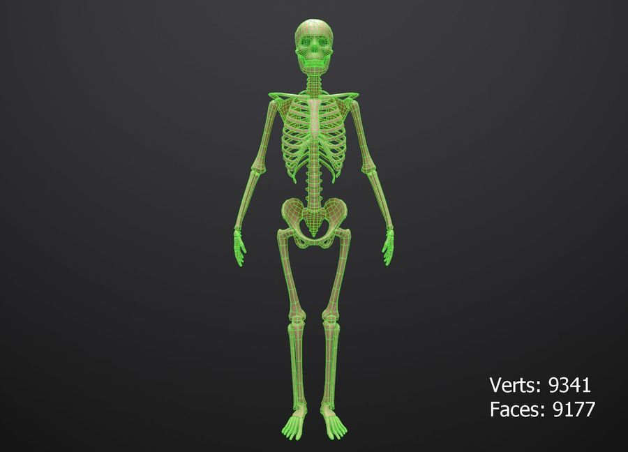 Substance Skeleton Army royalty-free 3d model - Preview no. 3