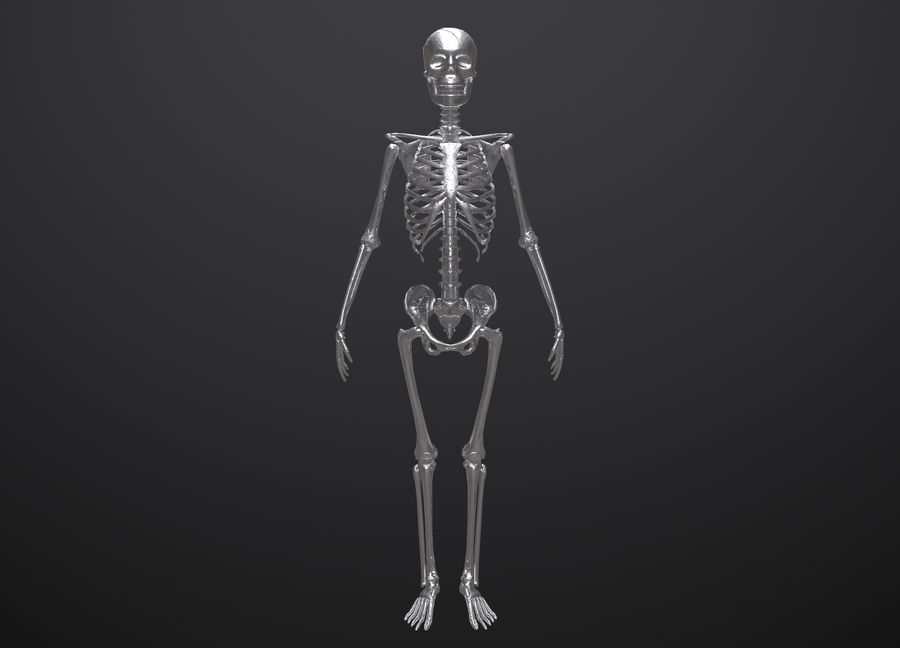 Substance Skeleton Army royalty-free 3d model - Preview no. 16