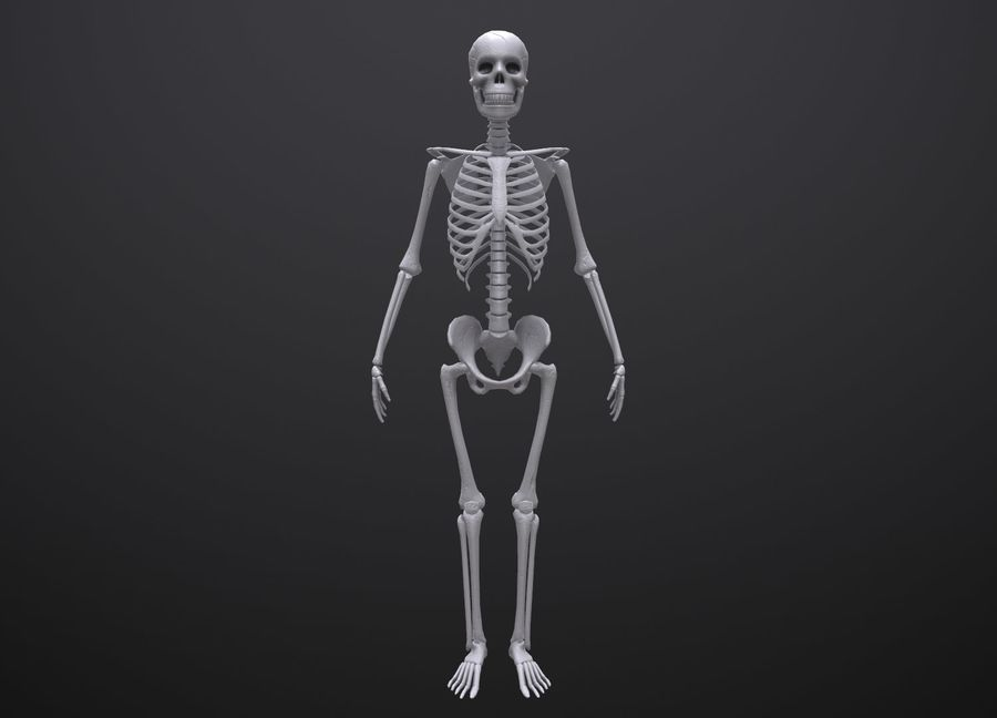 Substance Skeleton Army royalty-free 3d model - Preview no. 23