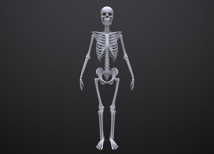 Substance Skeleton Army royalty-free 3d model - Preview no. 13