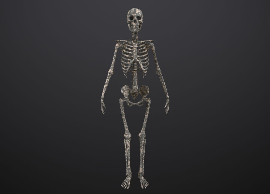 Substance Skeleton Army royalty-free 3d model - Preview no. 9