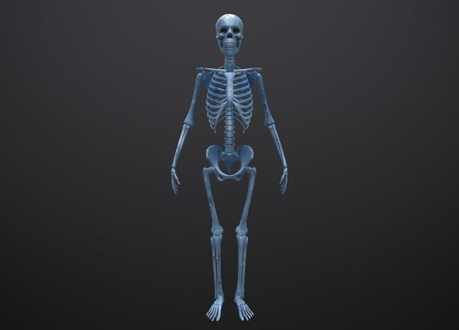 Substance Skeleton Army royalty-free 3d model - Preview no. 15