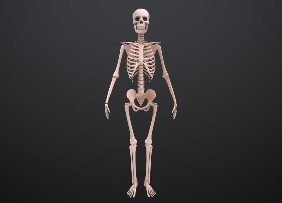 Substance Skeleton Army royalty-free 3d model - Preview no. 22