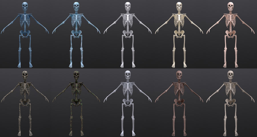 Substance Skeleton Army royalty-free 3d model - Preview no. 2