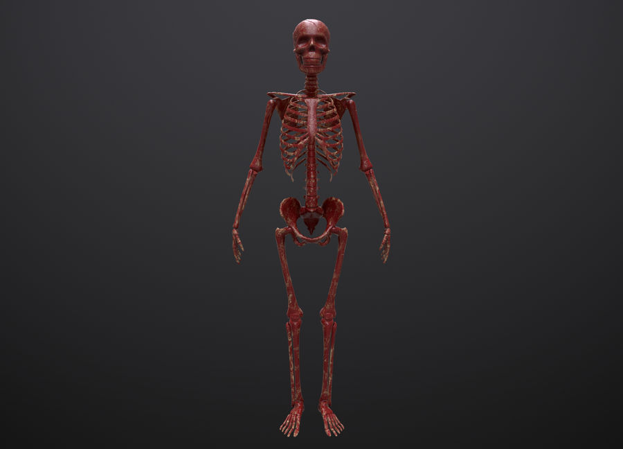 Substance Skeleton Army royalty-free 3d model - Preview no. 7