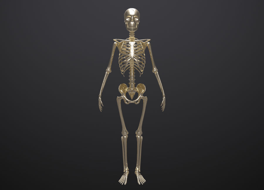 Substance Skeleton Army royalty-free 3d model - Preview no. 12