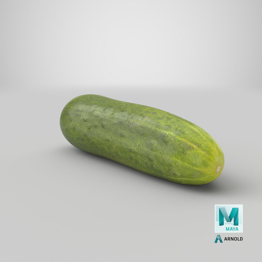 Cucumber 07 royalty-free 3d model - Preview no. 28