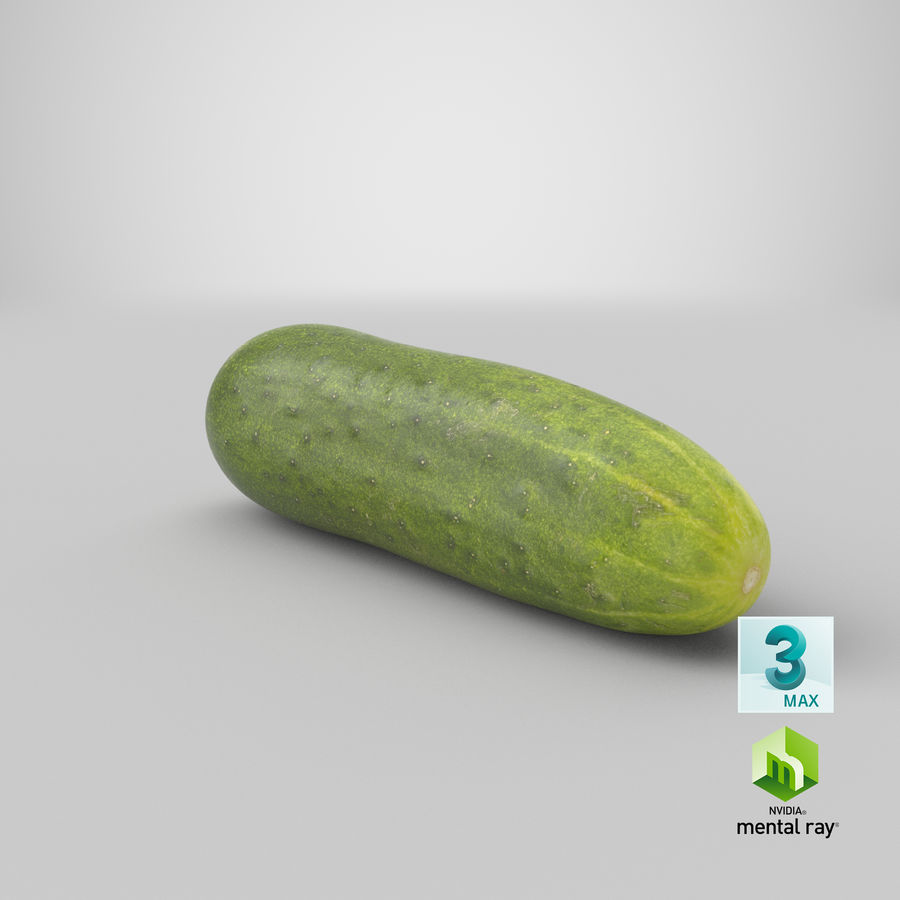 Cucumber 07 royalty-free 3d model - Preview no. 26