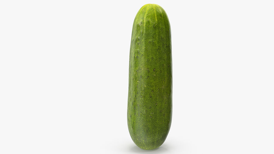 Cucumber 07 royalty-free 3d model - Preview no. 14