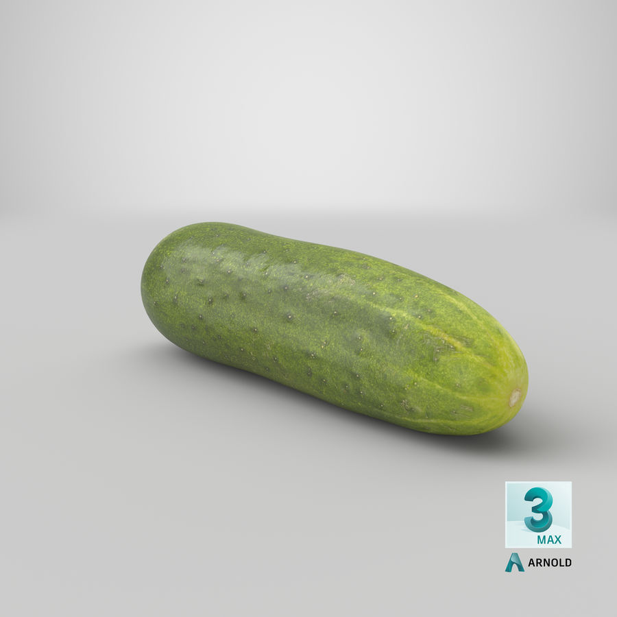 Cucumber 07 royalty-free 3d model - Preview no. 25