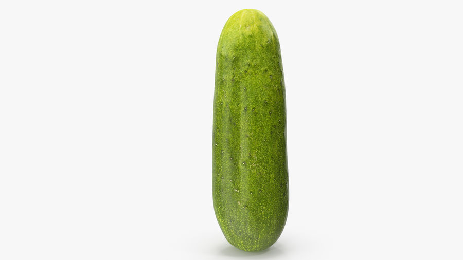 Cucumber 07 royalty-free 3d model - Preview no. 11