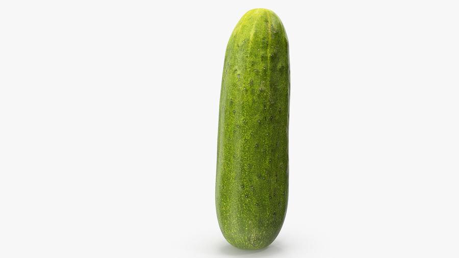 Cucumber 07 royalty-free 3d model - Preview no. 10
