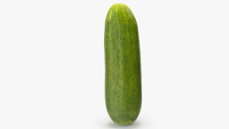 Cucumber 07 royalty-free 3d model - Preview no. 13