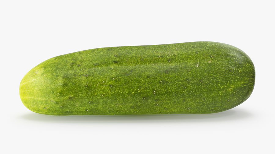 Cucumber 07 royalty-free 3d model - Preview no. 6