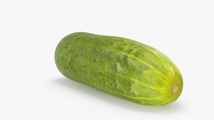 Cucumber 07 royalty-free 3d model - Preview no. 8