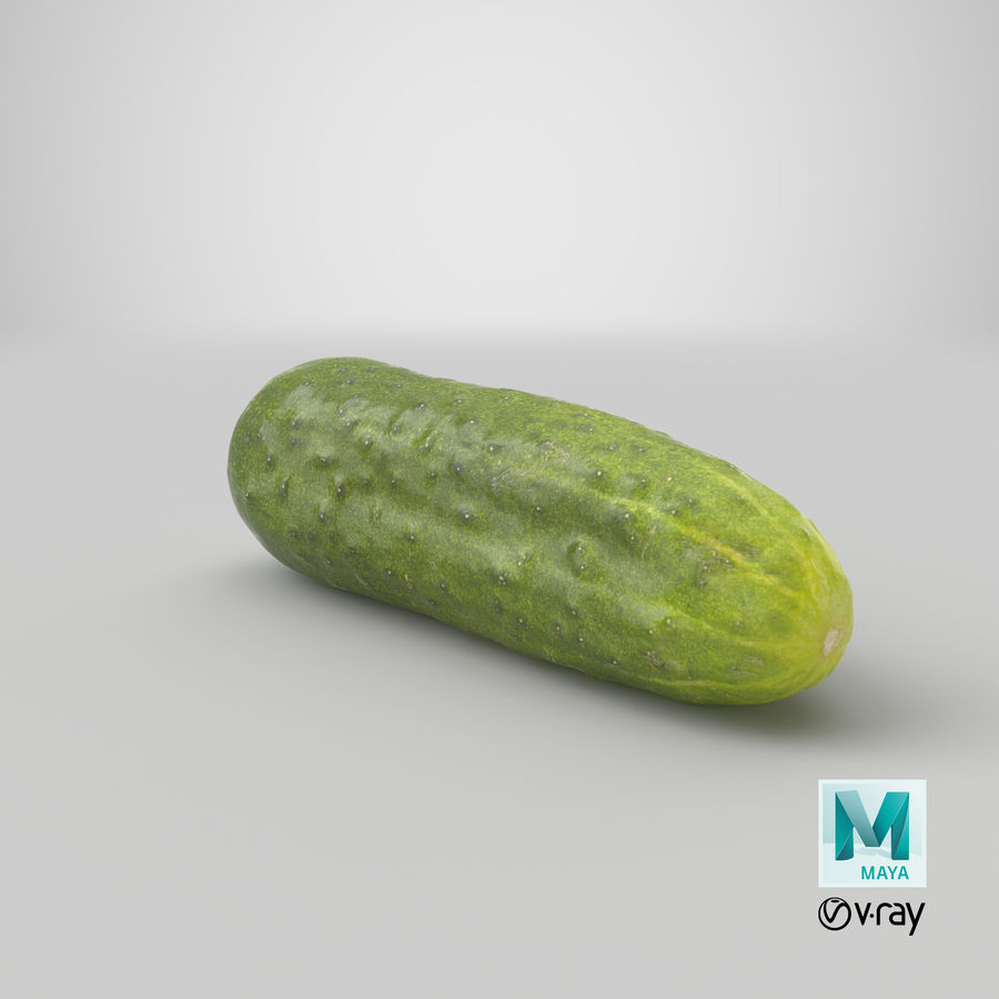 Cucumber 07 Hi Poly royalty-free 3d model - Preview no. 27