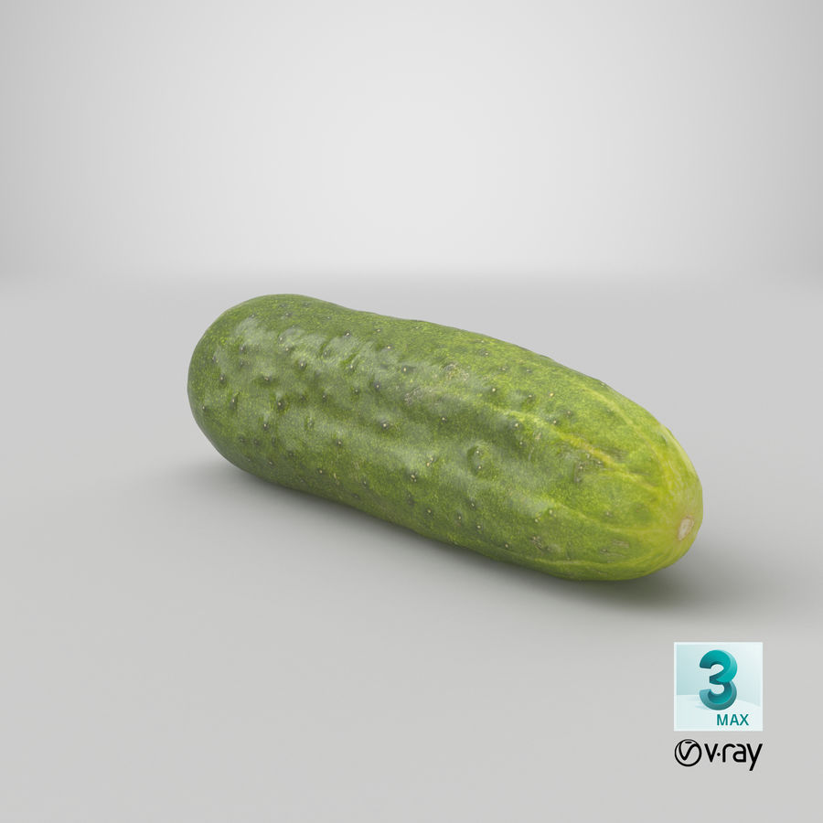 Cucumber 07 Hi Poly royalty-free 3d model - Preview no. 24