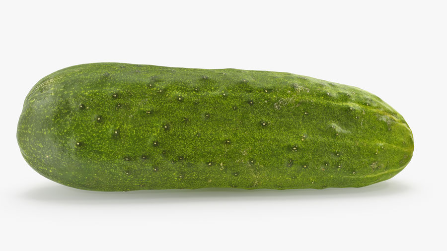 Cucumber 07 Hi Poly royalty-free 3d model - Preview no. 3