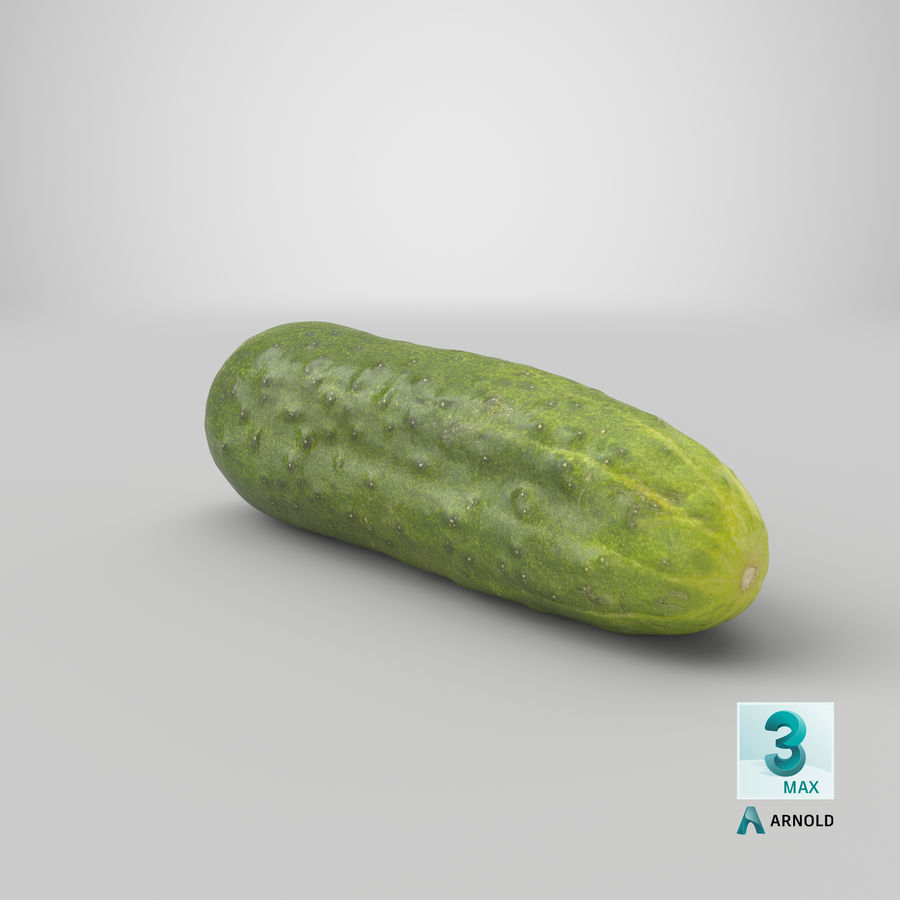 Cucumber 07 Hi Poly royalty-free 3d model - Preview no. 22
