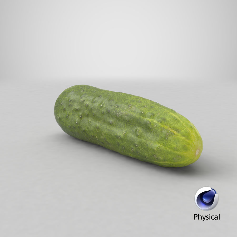 Cucumber 07 Hi Poly royalty-free 3d model - Preview no. 20