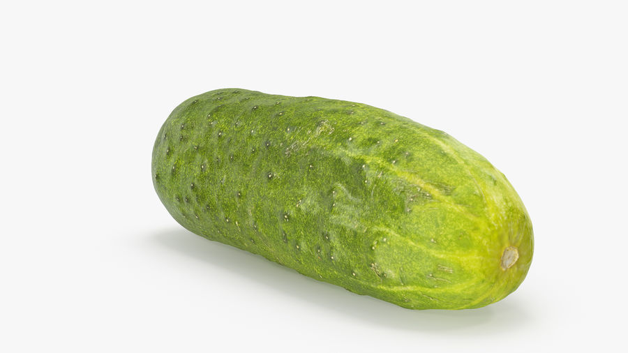 Cucumber 07 Hi Poly royalty-free 3d model - Preview no. 8