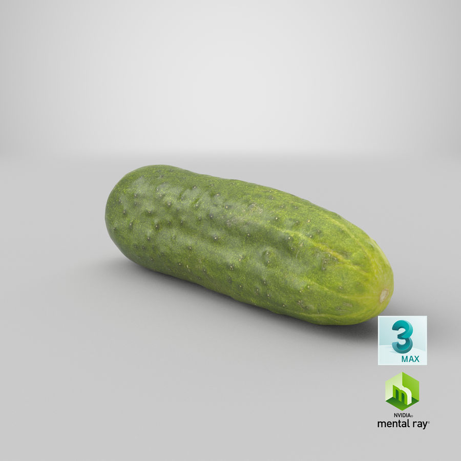 Cucumber 07 Hi Poly royalty-free 3d model - Preview no. 23