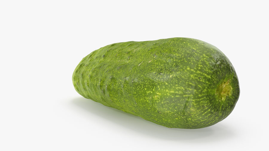 Cucumber 07 Hi Poly royalty-free 3d model - Preview no. 5
